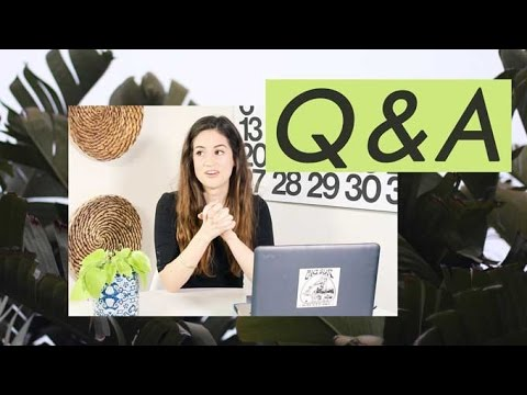 Travco, Health Updates, Plant Care Tips, Past Jobs, and Travel | Q &A with Alli