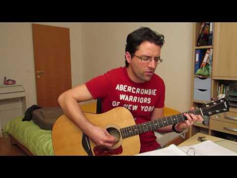 Die Toten Hosen - Alles aus Liebe (Acoustic Cover by johnny fingerpicking)