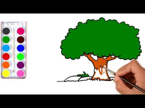 Drawing For Kids With Colour Www Robertdee Org