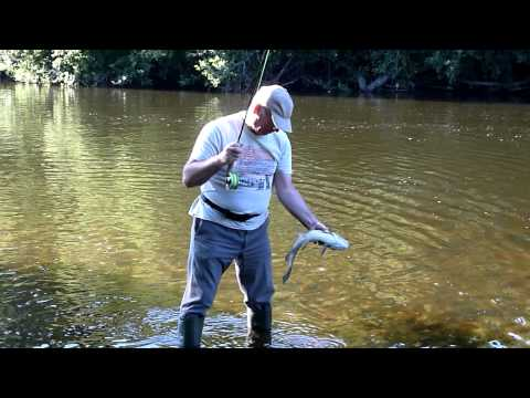 Fly Fishing  On The River Blavet Just North Of Baud In Brittany And Catching A 3lb Chub (part 2)