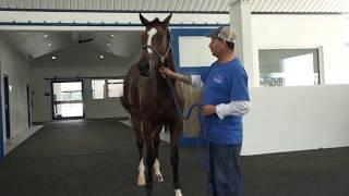Highlander Training Center Overview