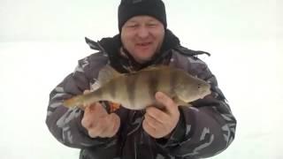Вологодская рыбалка  Искренняя радость!