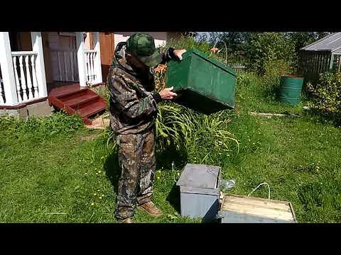 Простая ловля пчелиных роев ловушками: видео-инструкции, рекомендации и советы