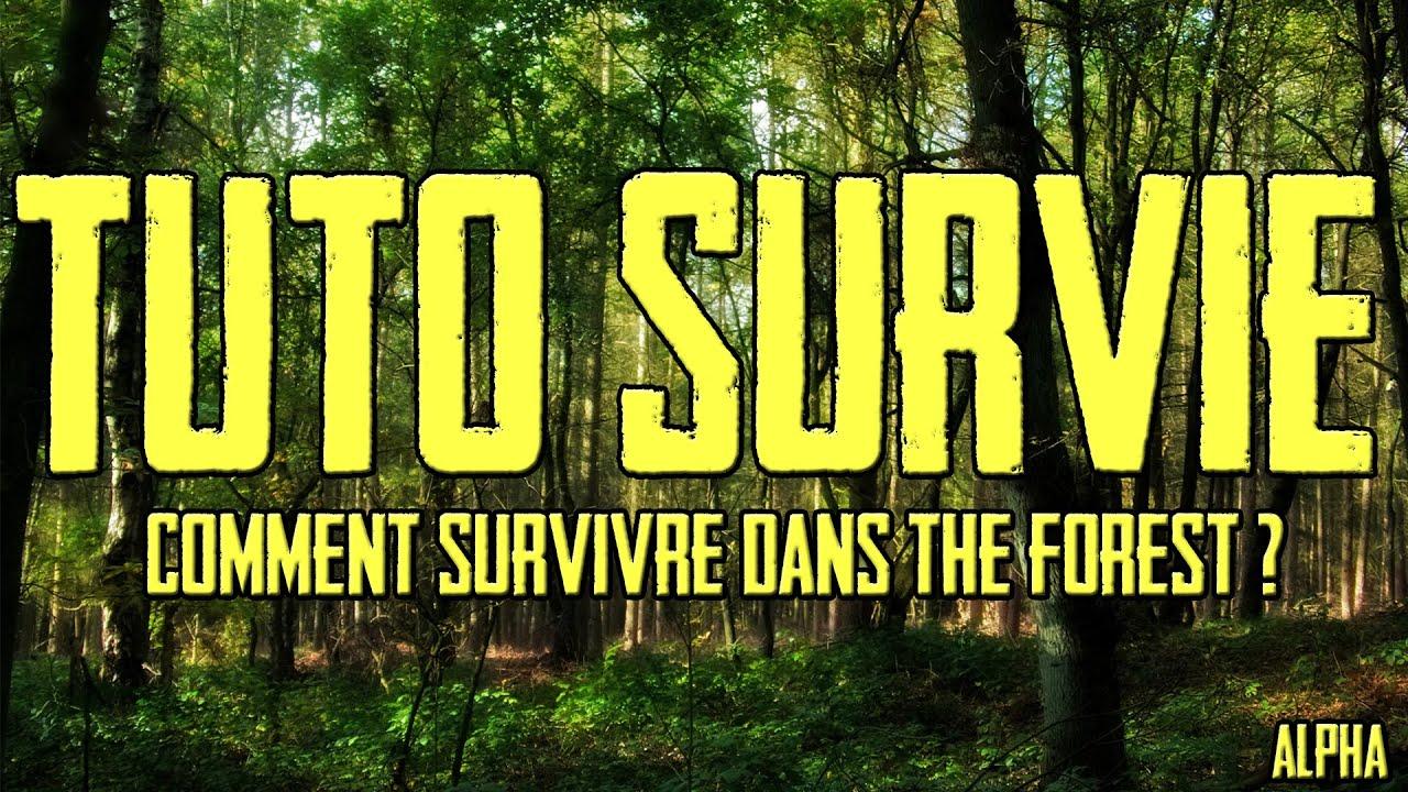 Comment Survivre Sur The Forest Tuto Survie Youtube