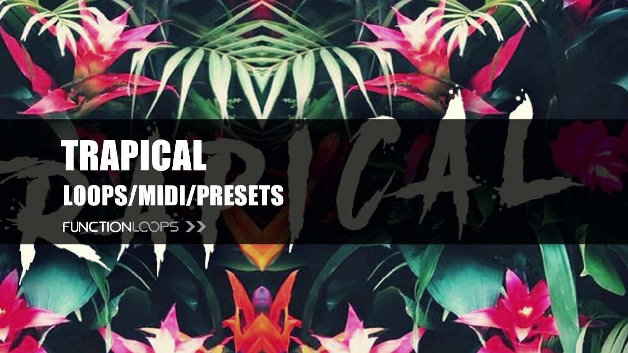 TRAPICAL - Sample Pack | Trapical Loops, Samples, MIDI & Presets ...