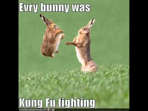 Lyric everybody love kung fu fighting