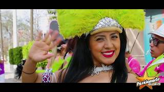 Batucada y Carnaval | Desfiles y Ferias
