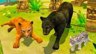 СИМУЛЯТОР ДИКОЙ КОШКИ #5 котята пантер / Развлекательное видео для детей #пурумчата