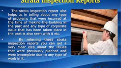 Building and Pest Inspections Perth | Pest Inspection Cost