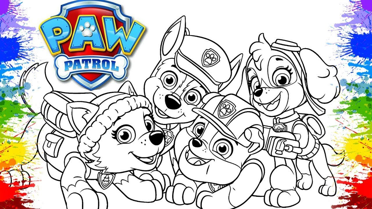 paw patrol coloring pages  cartoon for kids children