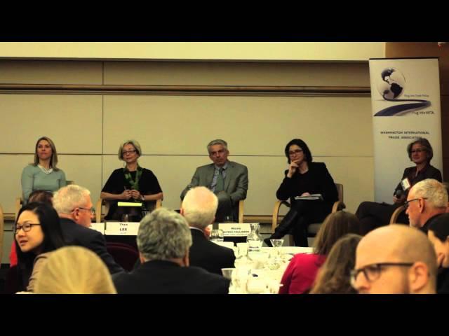 WITA TPP Series:Manufacturing Panel: Thea Lee of AFL-CIO 1/28/16