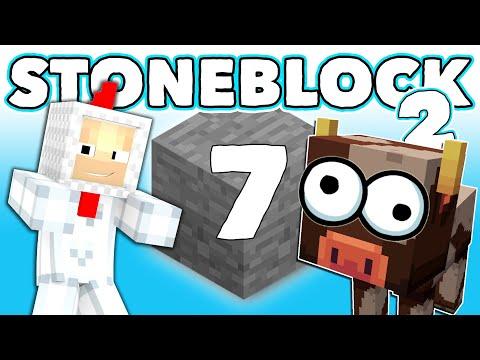 stoneblock-2-7-kravy