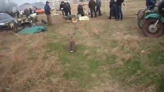 Огромный кроль породы великан.Huge giant rabbits.(На этом видео очень большой кролик,вес взрослой особи 8-12 кг.Отличная идея для разведения кролей на мясо.Сто..., 2015-12-25T00:53:08.000Z)
