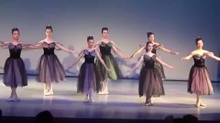 Ballet Arts of Austin Spring Recital 2017 - 5A/B pointe