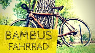 ➤ BAMBUS-Fahrrad | TEST | Trip with a Bamboo-Bike! #BambooBike | Max GREEN