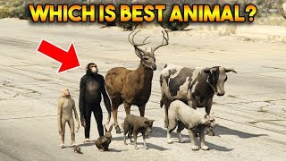 GTA 5 ONLINE : WHICH IS BEST ANIMAL?