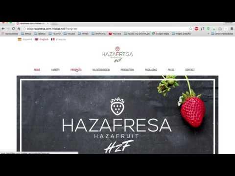 Diseño web con traducción