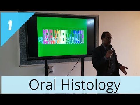 Oral Histology (1) - Development of teeth - دكتور عباس قريب الله