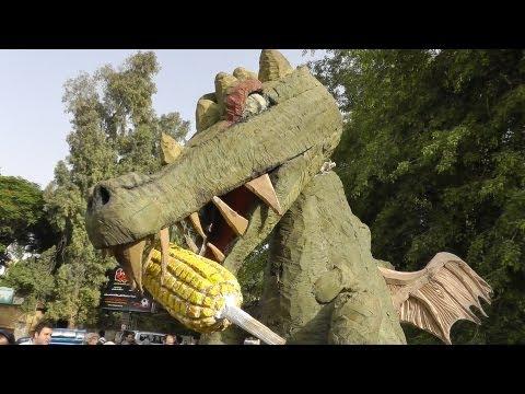 Egypt eco activists protest Monsanto GM seeds وقفة ضد مونسانتو وبذور معدلة وراثيا