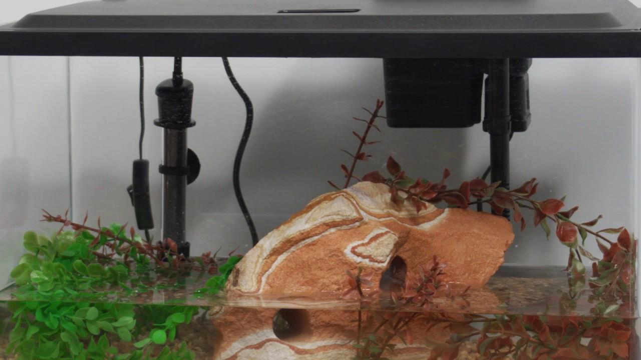 tetra products 10 gallon aquarium kit setup youtube