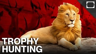 Why Is Trophy Hunting Legal?