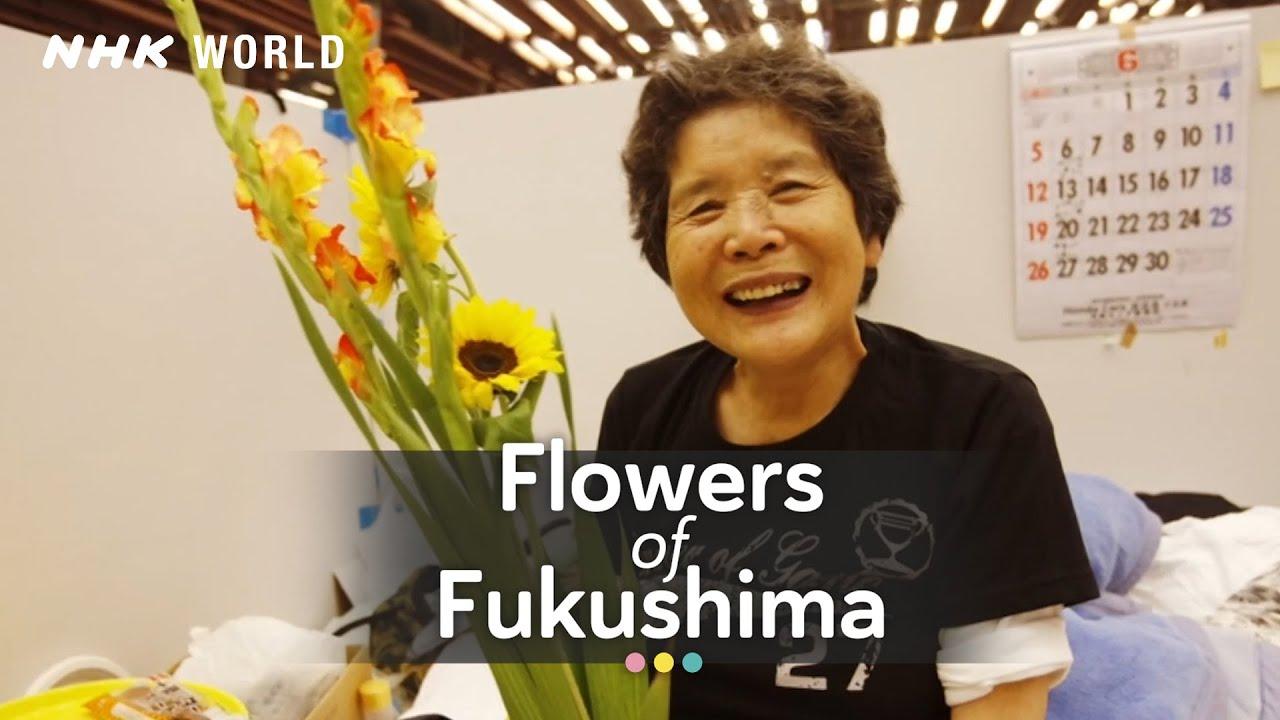 Photo of Flowers of Fukushima – video