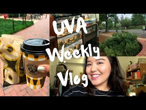 UVA Vlog || Perks Of Living in Old Dorms, Killing bugs and life lesson ?