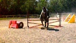 Examen galop 4 obstacle