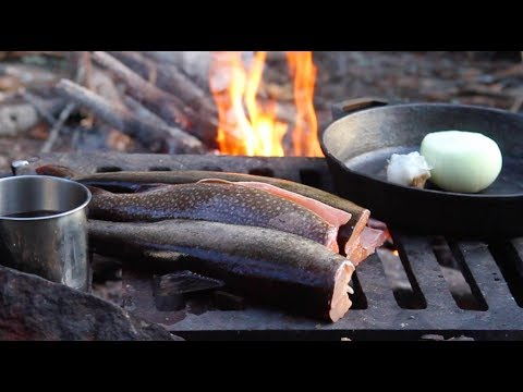 Boundary Waters Lake Trout--A Gift From The North
