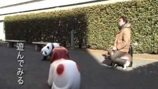 三田国際ビル 児童公園   三田マップ