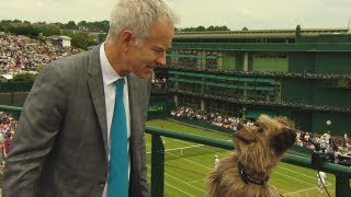 Wimbledon 2013 - Hacker The Dog Squares Up To John McEnroe