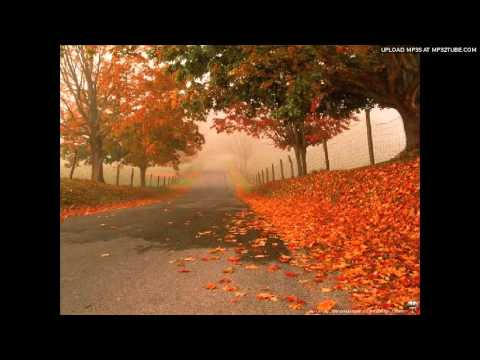 Autumn leaves - Eva Cassidy instrumental