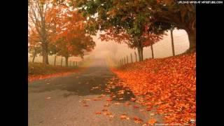 Autumn leaves - Eva Cassidy instrumental