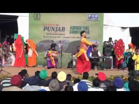 Chapper Chiri(culture programme for agriculture festival)Mohali chandigarh by Nrinder Nindi