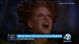 'Hocus Pocus' Reunion: Bette Midler, Sarah Jessica Parker, Kathy Najimy Reunite For Halloween Event