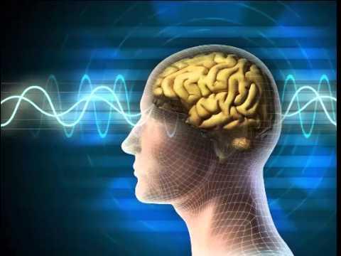 Nhạc không lời giúp tập trung, ghi nhớ, tưởng tượng - Thích hợp khi học bài -
