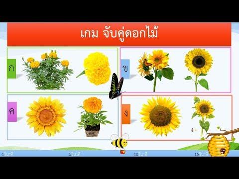 เกม จับคู่ดอกไม้ 10 ข้อ