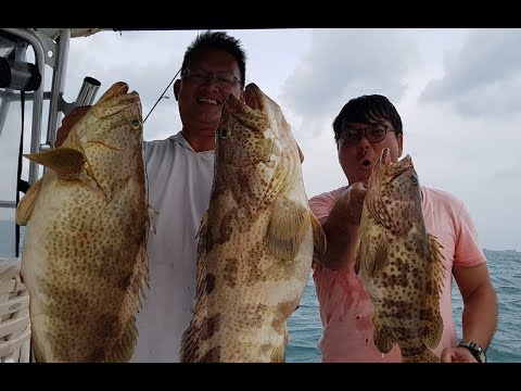 How To Drift Fish For Big Groupers! Ep 81 ONZZ Fishing Singapore