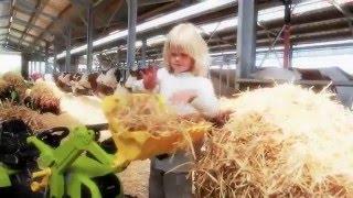 Мультфильм про машинки. Игрушки для детей - Трактор копалка, Экскаватор.(Мультфильм про машинки. Игрушки для детей - Трактор копалка, Экскаватор. Спасибо за Like и за Подписку на мой..., 2016-03-24T18:03:49.000Z)