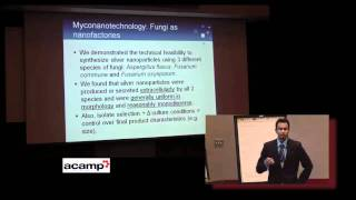 Sunil Rajput - Bio-Assembled Nanostructures: Potential for Metal Nanoparticles