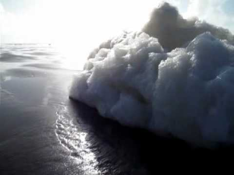 What Causes Sea Foam on the Beach? Protein Does!