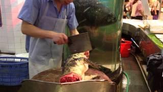 Killing and Skinning Live Crocodile Part 2