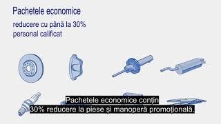 Piesele economice multimarca