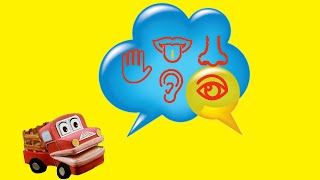 Los Cinco Sentidos para niños. Video Educativo. Berney El Camión. Lunacreciente