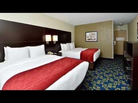 Comfort Inn & Suites Universal/Convention Center - Orlando, FL