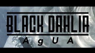 BLACK DAHLIA- AgUA