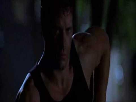 The Punisher MV  The Night