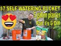 $7 Dollar Self Watering Bucket - DIY How-To make Each Container $1 - $7