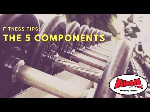 Personal Training Tips: The 5 Components of Fitness