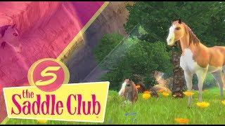 The Saddle Club- Przygody w siodle #5 - Mamy źrebaczka!